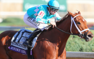Foto:Breeders Cup(Wendy Wooley/Eclipse Sportswire)