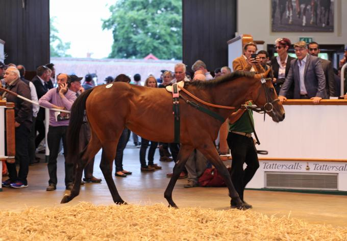 Jewel House brachte 215.000 Guineas