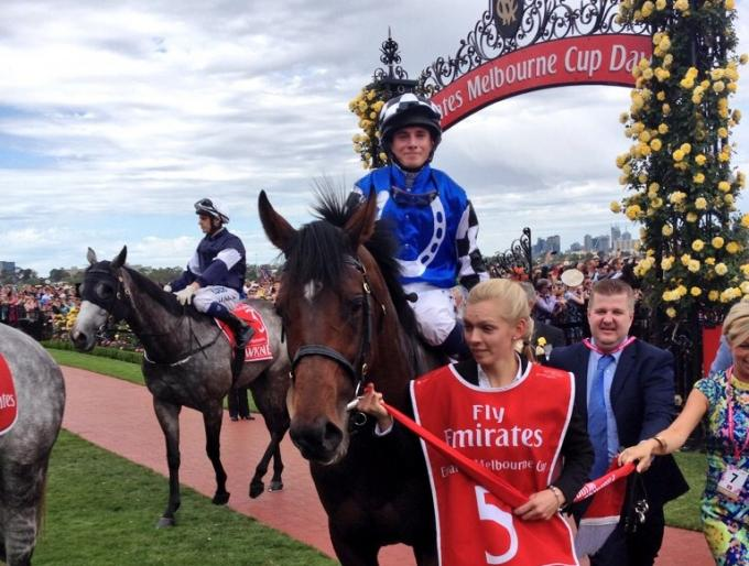 Melbourne Cup-Sieger Protectionist